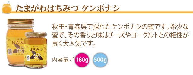 ●(たまがわはちみつ ケンポナシ)秋田・青森県で採れたケンポナシの蜜です。希少な蜜で、その香りと味はチーズやヨーグルトとの相性が良く大人気です。
